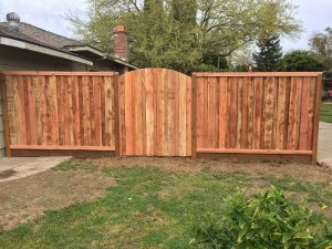 BOARD ON BOARD FENCE WITH ARCHED GATE